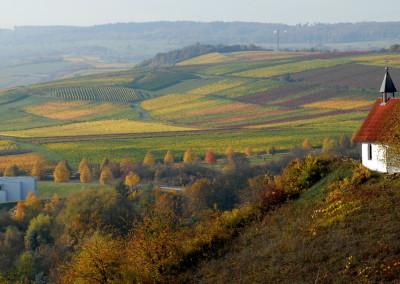 142_Herbstbunter-Hingugger_Windesheim